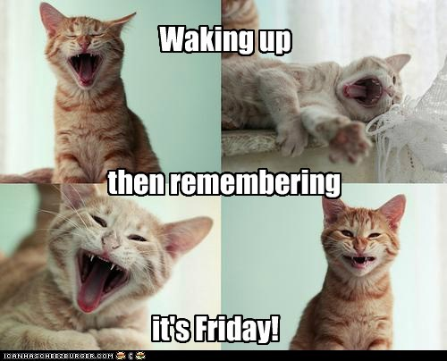 Waking up then remembering it's Friday!