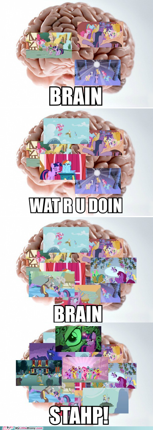 my little pony stahp brain - 7264676864