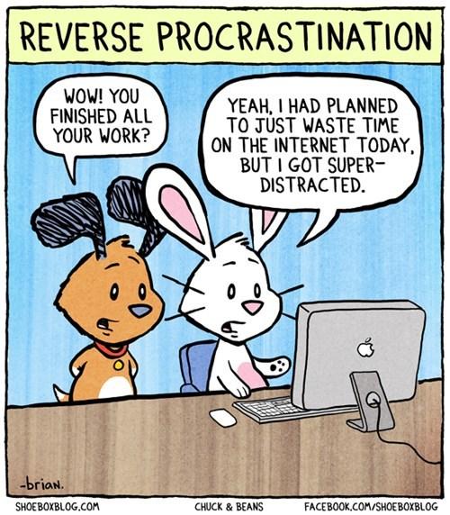 procrastination internet comics - 7264840448