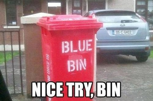 bin,you had one job