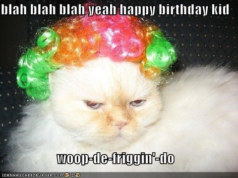 Blah Blah Blah Yeah Happy Birthday Kid Woop De Friggin Do