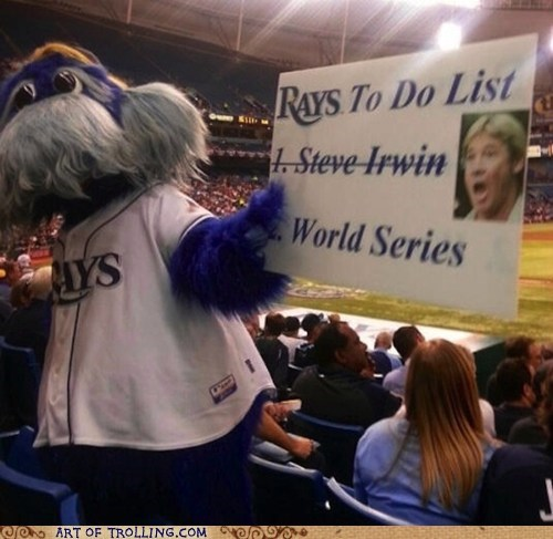 steve irwin,tampa bay rays,baseball,raymond the ray,MLB