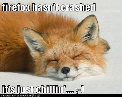 crashed firefox