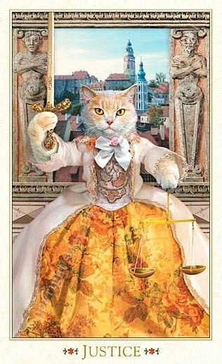 tarot cards tarot bohemian barouque Cats - 7269893