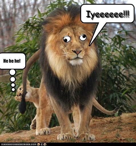 Iyeeeeee!!! He he he! Cleverness Here