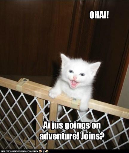 OHAI! Ai jus goings on adventure! Joins?