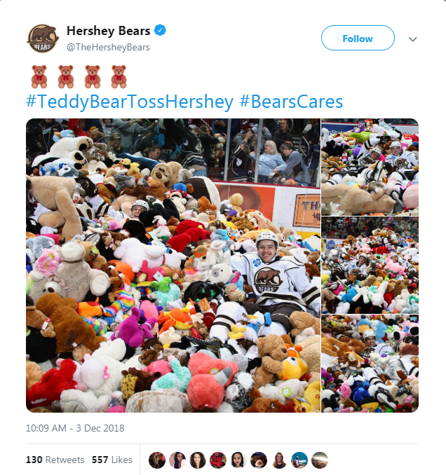hockey game teddy bear hockey donations fans - 7278341
