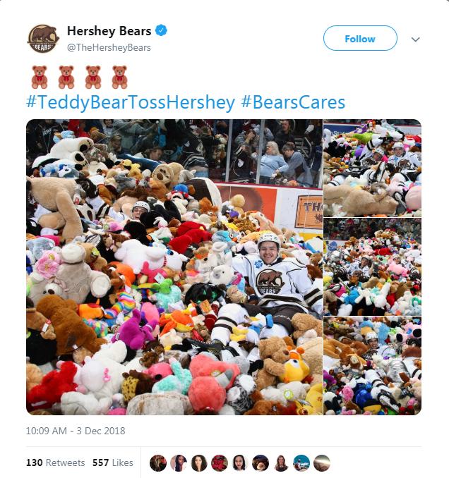 teddy bear hockey donations fans - 7278341