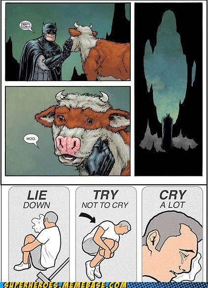 Sad bat cow batman damien - 7278344704