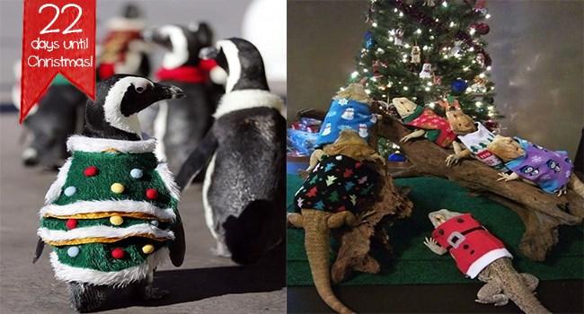 ugly christmas sweater animals