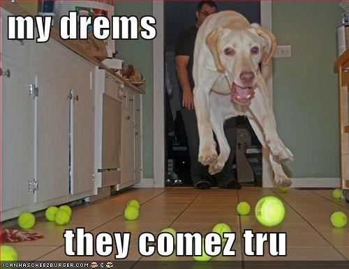 tennis balls dreams