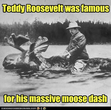 lakes,teddy roosevelt,moose
