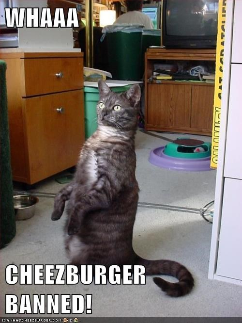 WHAAA  CHEEZBURGER BANNED!