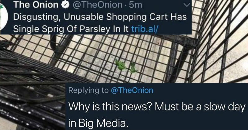 twitter news jokes the onion lies satire facebook fake news ridiculous false dumb idiots stupid - 7282181