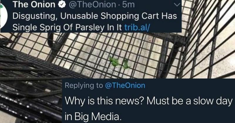 twitter news jokes the onion lies satire facebook fake news ridiculous false dumb idiots stupid - 7282181