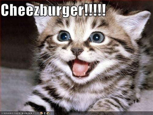 Cheezburger Image 728313600