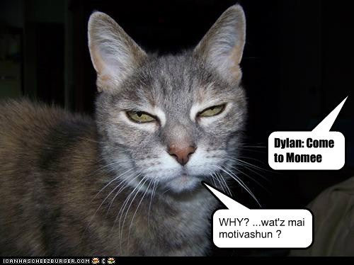Dylan: Come to Momee WHY? ...wat'z mai motivashun ? Cleverness Here
