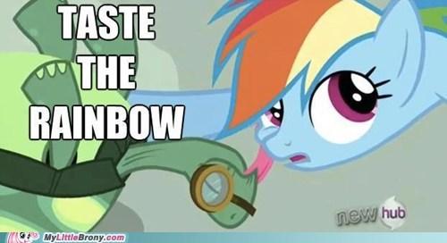tank image macro skittles rainbow dash - 7285613056
