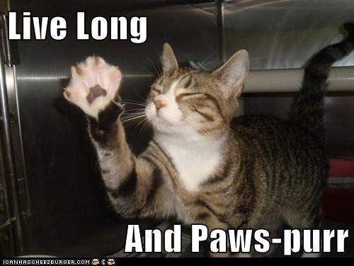 paw,live long and prosper