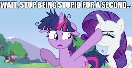 hooves,twilight sparkle,rarity,stupid