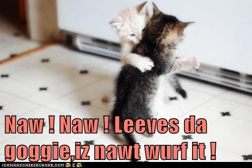 Naw ! Naw ! Leeves da goggie,iz nawt wurf it !
