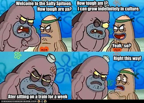 How tough am I?   I can grow indefinitely in culture.