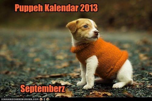 puppy,calender