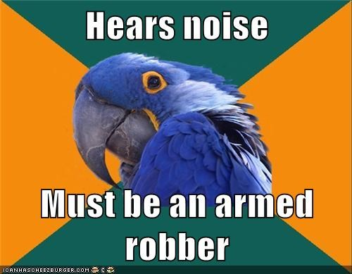 robbers,noise,Paranoid Parrot