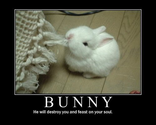 soul destroy you bunny
