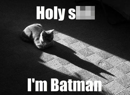 batman - 7294999296