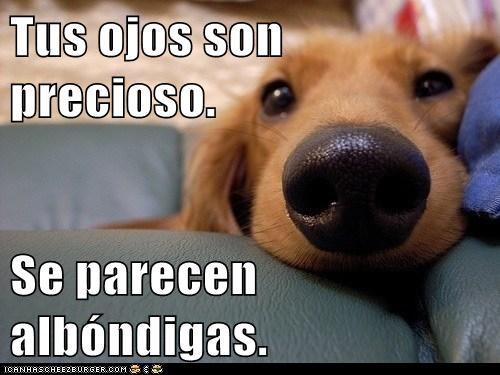 en español - 7296367360