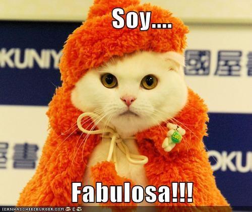 en español Cats - 7296502272