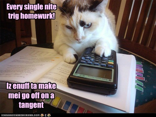 homework trigonometry math - 7296592128