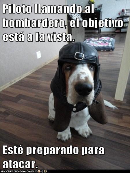 en español - 7296799232