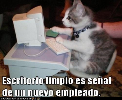 en español - 7296808960