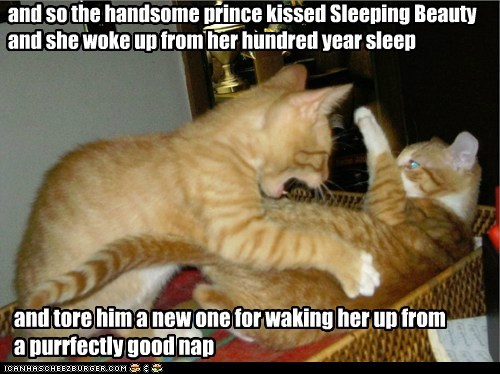 and so the handsome prince kissed Sleeping Beauty and she woke up from her hundred year sleep and tore him a new one for waking her up from a purrfectly good nap