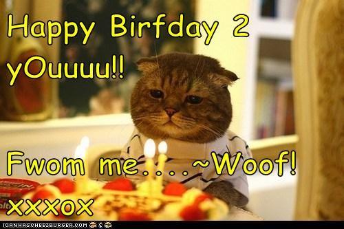 Happy Birfday 2 yOuuuu!!  Fwom me....~Woof! xxxox