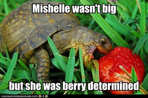 Mishelle wasn't big but she was berry determined