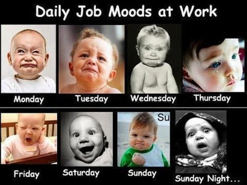 Babies work week funny faces monday thru friday g rated - 7301800704