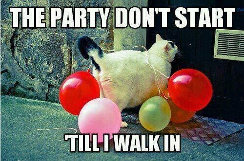 Balloons,kesha,party don't start