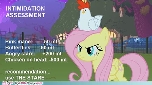 chicken intimidation dnd fluttershy - 7302349824