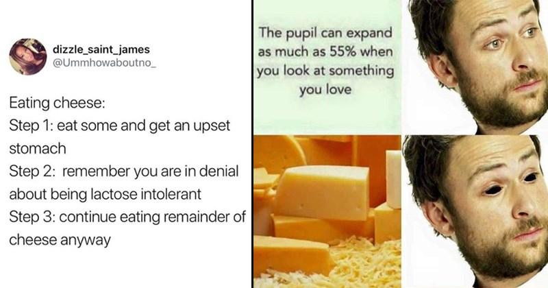 stupid cheese memes and puns