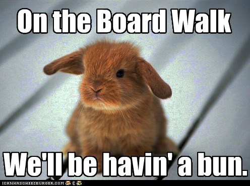 boardwalk,bunny