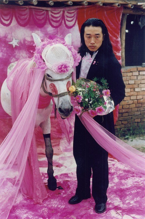 marriage wtf horse