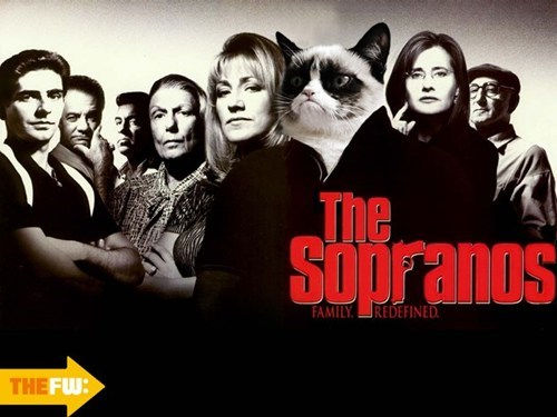 Grumpy Cat,movies,photoshop,TV