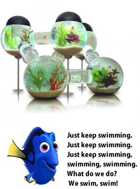 pets design aquarium fish tank - 7303521280