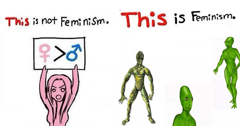 Meme about feminism, this is feminism.