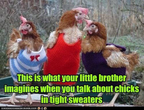 This is what your little brother imagines when you talk about chicks in tight sweaters