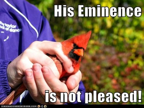 His Eminence  is not pleased!