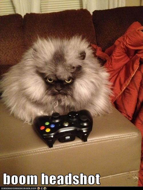headshot,colonel meow,video games